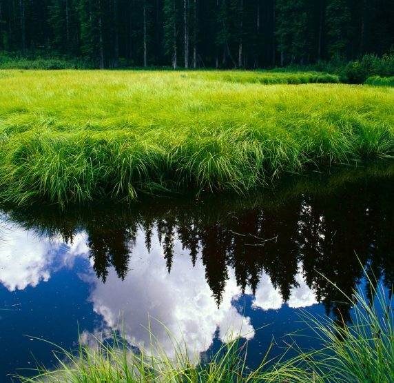 For-1080p-widescreen-lcd-monitor-hd-beautiful-landscape